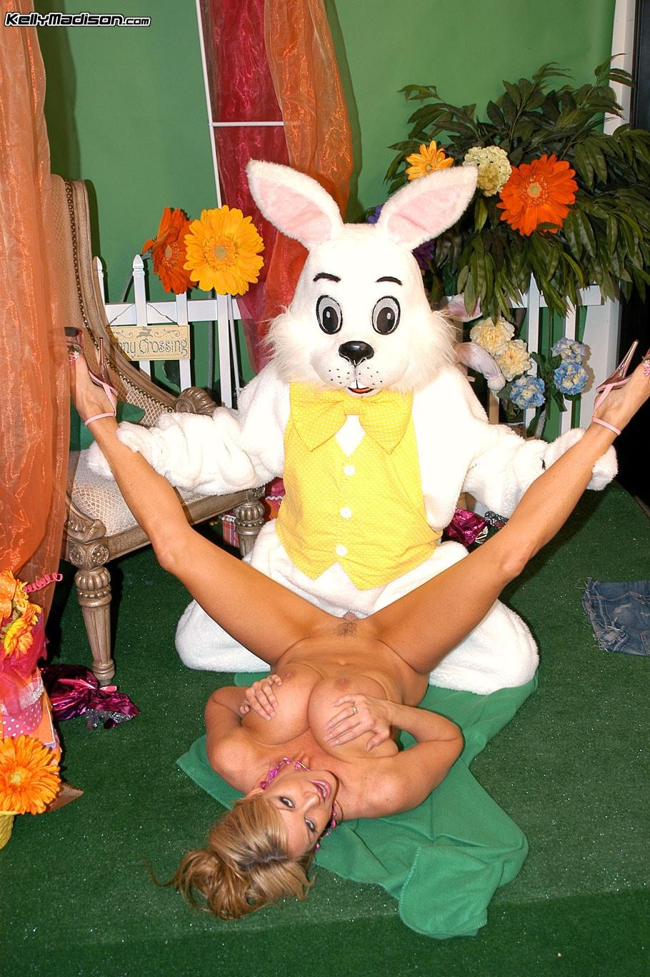 Rabbit Cam Sex